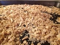 close up oats